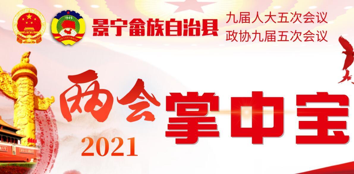 """2021景宁""""两会""""掌中宝专题"""